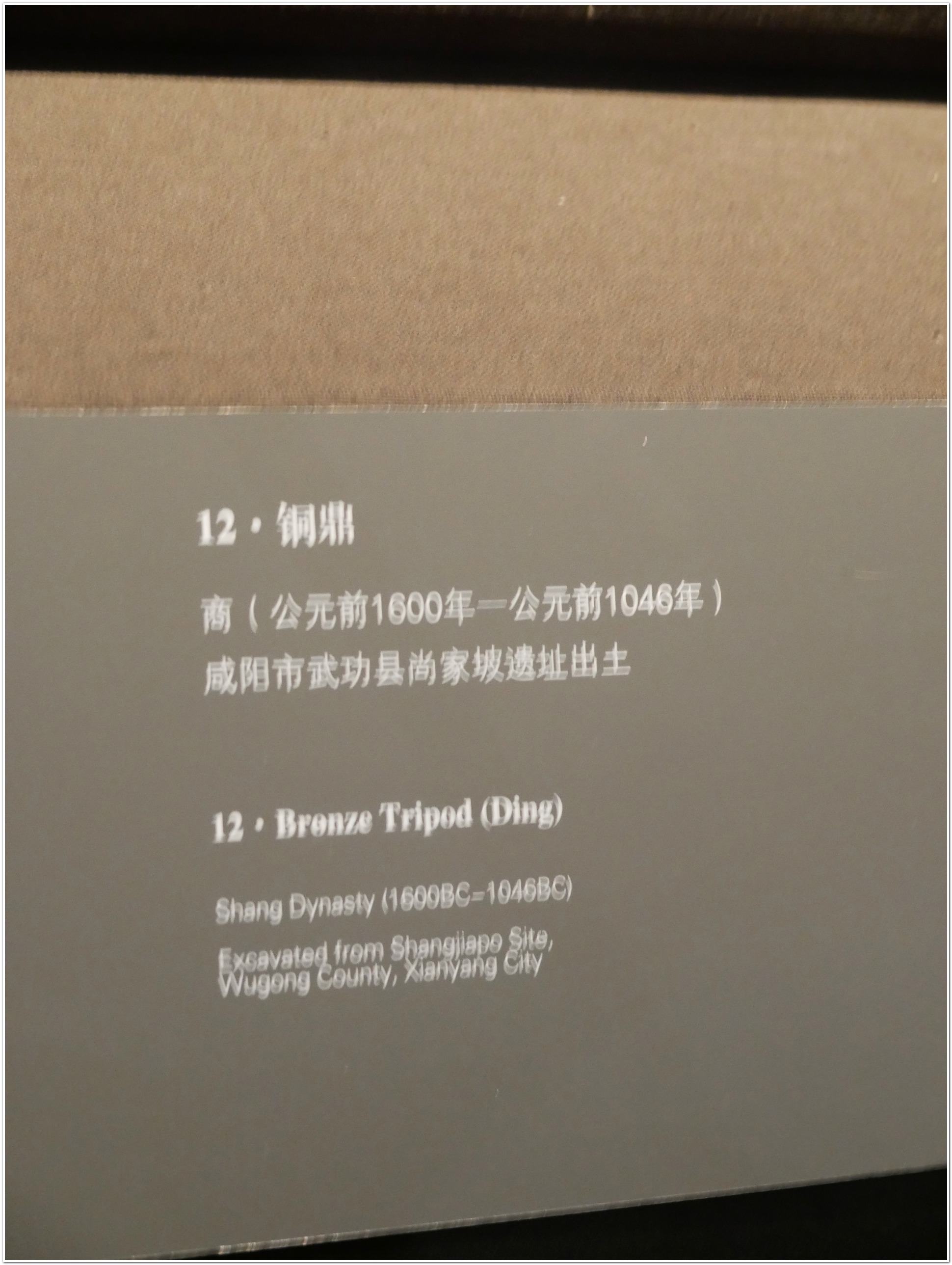 P1110132.jpg